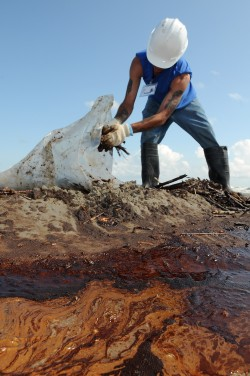 A worker cleans up oily waste on Elmer's Island, following the Deepwater Horizon explosion in 2010, which killed 11 people. Photo: Petty Officer 3rd Class Patrick Kelley