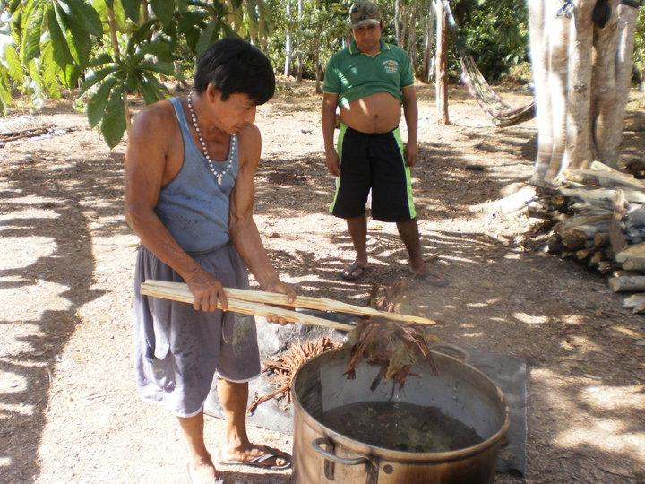 ayahuasca_2010